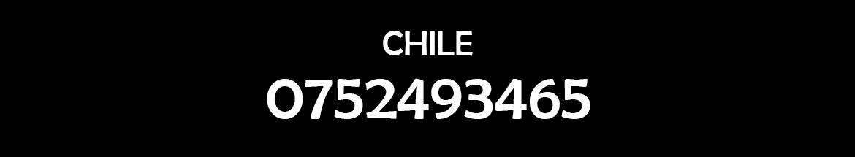 Japon Motors Repuestos Y Accesorios Argentina Chile